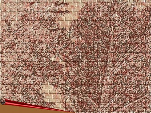 Drzewa w murze. #natura #grafika #zmysl
