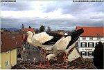 http://images32.fotosik.pl/180/5257b84c889d7a10m.jpg