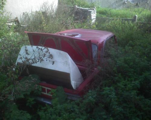 fura w krzakach :D #samochód #auto #krzaki #fiat #złom