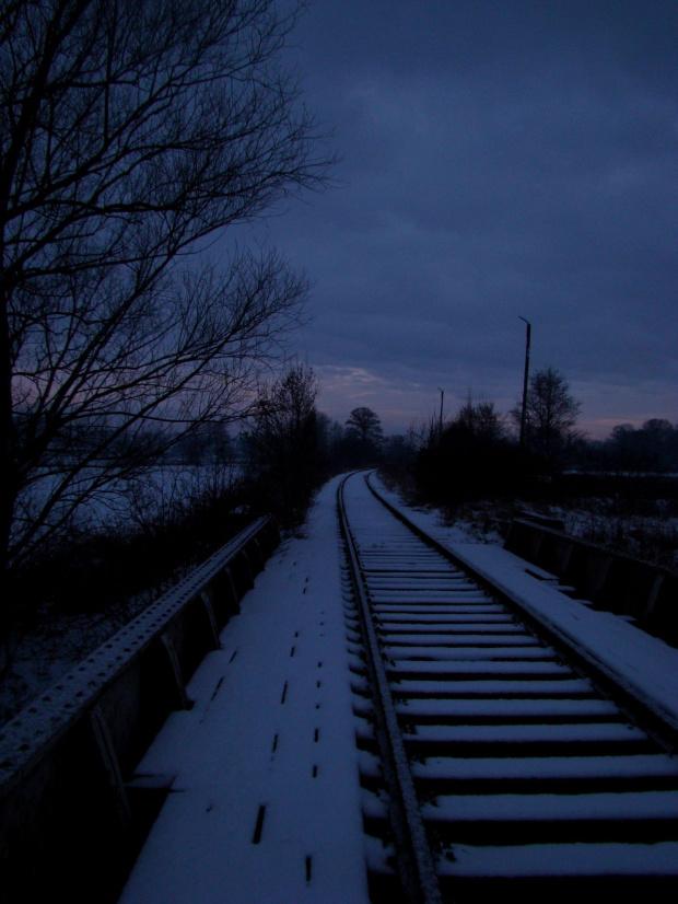 #Tory #zima #śnieg