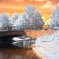 Zima jakiej zycze wszystkim #zima #widoki #snieg #mroz